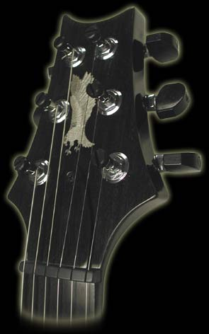 PRS-Private-Stock-Singlecut-3.jpg (295x472 -- 14470 bytes)