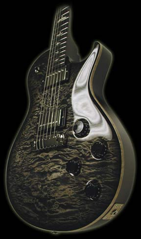 PRS-Private-Stock-Singlecut-5.jpg (288x486 -- 18512 bytes)