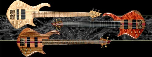 Warrior_Signature_Bass.jpg (500x190 -- 24972 bytes)