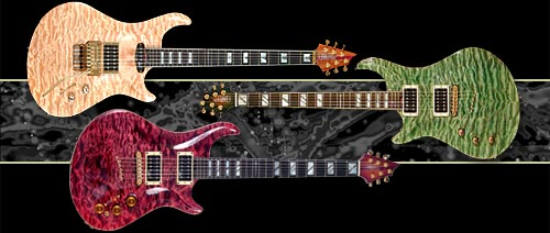 Warrior_Signature_Guitar.jpg (500x212 -- 26685 bytes)